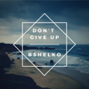 Bshelko - Don't Give Up artwork