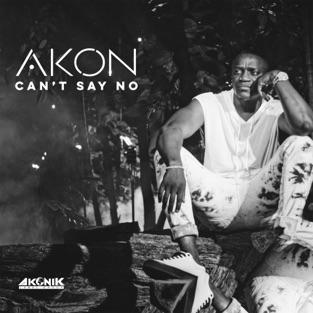 Akon - Can't Say No m4a Download