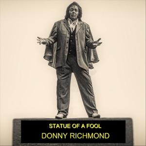 Donny Richmond - Statue of a Fool - Line Dance Music