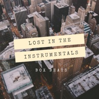 Lost in the Instrumentals (Instrumental)