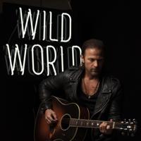 Download lagu Kip Moore - Wild World