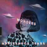 Applesauce Tears - Night of Strange Particle