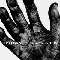 Download Mp3 Editors - Black Gold: Best of Editors (Deluxe)