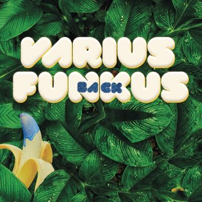 VARIUS FUNKUS