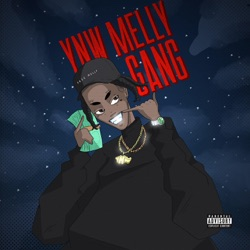 Artist YNW Melly Genre, Years active