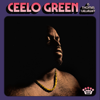 CeeLo Green - Doing It All Together kunstwerk