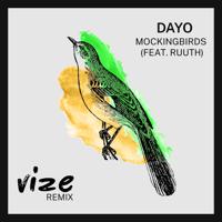 Mockingbirds (feat. Ruuth) [VIZE Remix]-Dayo