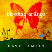Dave Tamkin - Bleeding Orange