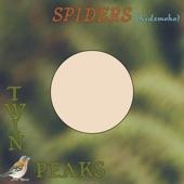 Twin Peaks - Spiders (Kidsmoke)