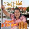 Stef Ekkel - Zomer In M'n Hart kunstwerk