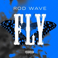 Fly - Single Mp3 Download