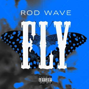 Rod Wave - Fly