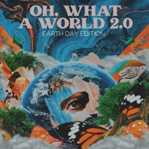 Kacey Musgraves - Oh, What a World 2.0