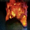Chillknot - Lifebuoy artwork