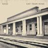 Kalli - Last Train Home artwork