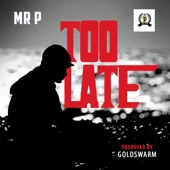Mr. P - Too Late