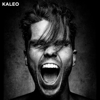 KALEO - I Want More artwork