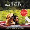 The Art of Racing in the Rain AudioBook Download