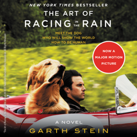 The Art of Racing in the Rain - Garth Stein MP3 Download
