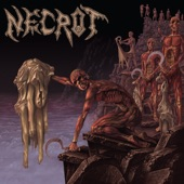 Necrot - Your Hell