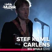 Big Whale (Live - uit Liefde voor Muziek)