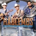 Ariel Camacho y Los Plebes Del Rancho - Cada Quien