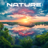 AShamaluevMusic - Nature artwork