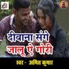 Deewana Sange Jaalu Ae Gauri Single