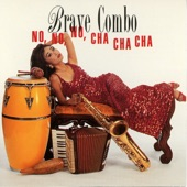 Brave Combo - Fly Me To The Moon