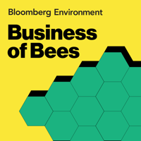 Business of Bees: Live in Seattle