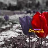 Wild Once - Perennials