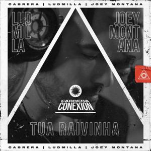 Cabrera, Joey Montana & Ludmilla - Tua Raivinha