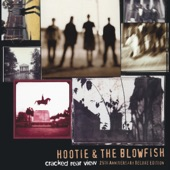 Hootie & the Blowfish - Only Wanna Be With You (2019 Remaster)