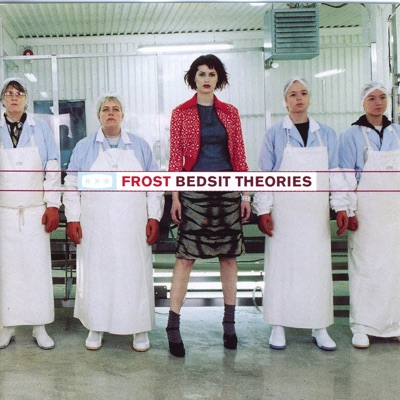 Bedsit Theories - Frost