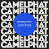 CamelPhat & Jake Bugg - Be Someone artwork