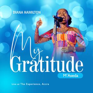 Diana Hamilton - My Gratitude (Live)
