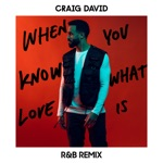 When You Know What Love Is (R&B Remix) - Single