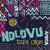 Ndlovu Youth Choir - Africa