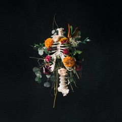 Graves into Gardens (Live)