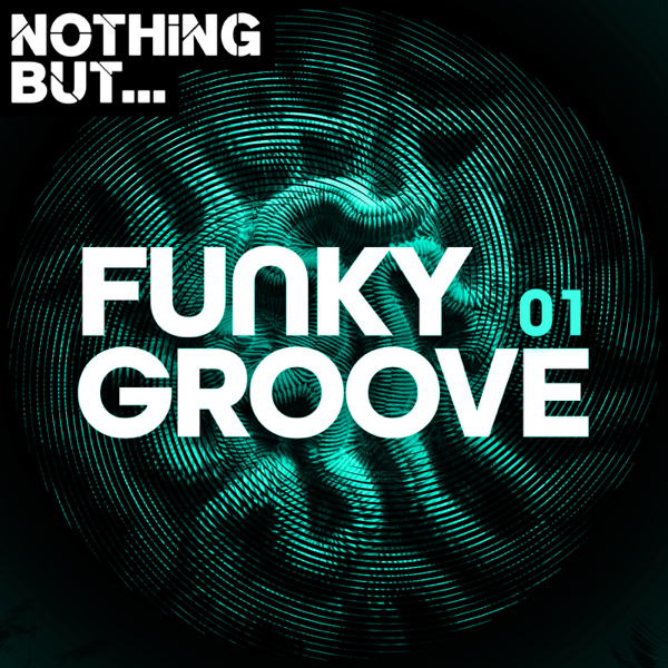 Download Various Artists Nothing But Funky Groove Vol 01 2019 Zip Torrent Zippyshare Various Artists Nothing But Funky Groove Vol 01 Album Mp3 320 Kbps M4a Itunes Free Mediafire