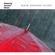 Rain Radiance & Yoga Rain Rain Noise - Rain Radiance & Yoga Rain