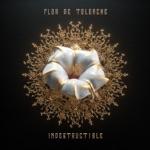Flor de Toloache & Miguel - Te Lo Dije