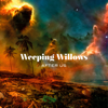 Weeping Willows - Let Go bild