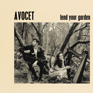 Avocet - Lend Your Garden