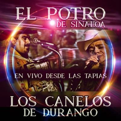 En Vivo Desde las Tapias - Los Canelos de Durango