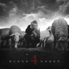 Caskey - Black Sheep 4  artwork