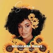 Ngihamba Nawe (feat. Sino Msolo) artwork