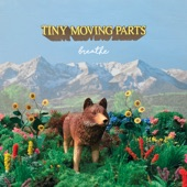 Tiny Moving Parts - Soft Spot