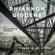 Wayfaring Stranger (with Francesco Turrisi) - Rhiannon Giddens
