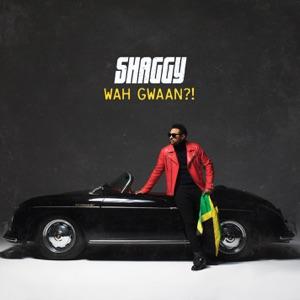 Wah Gwaan?! Mp3 Download